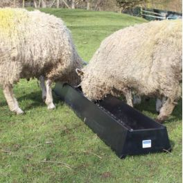 2m Floor Standing Feed Trough - 34L