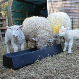 1m  Floor Standing Feed Trough - 16L